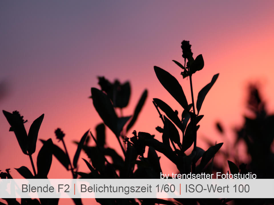 Im Fotografieoutdoorseminar fotograieren lernen bei trendsetter Fotografie Chemnitz
