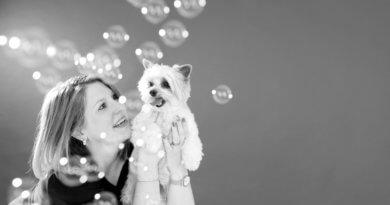Tiershooting mit Seifenblasen, Hundeshooting