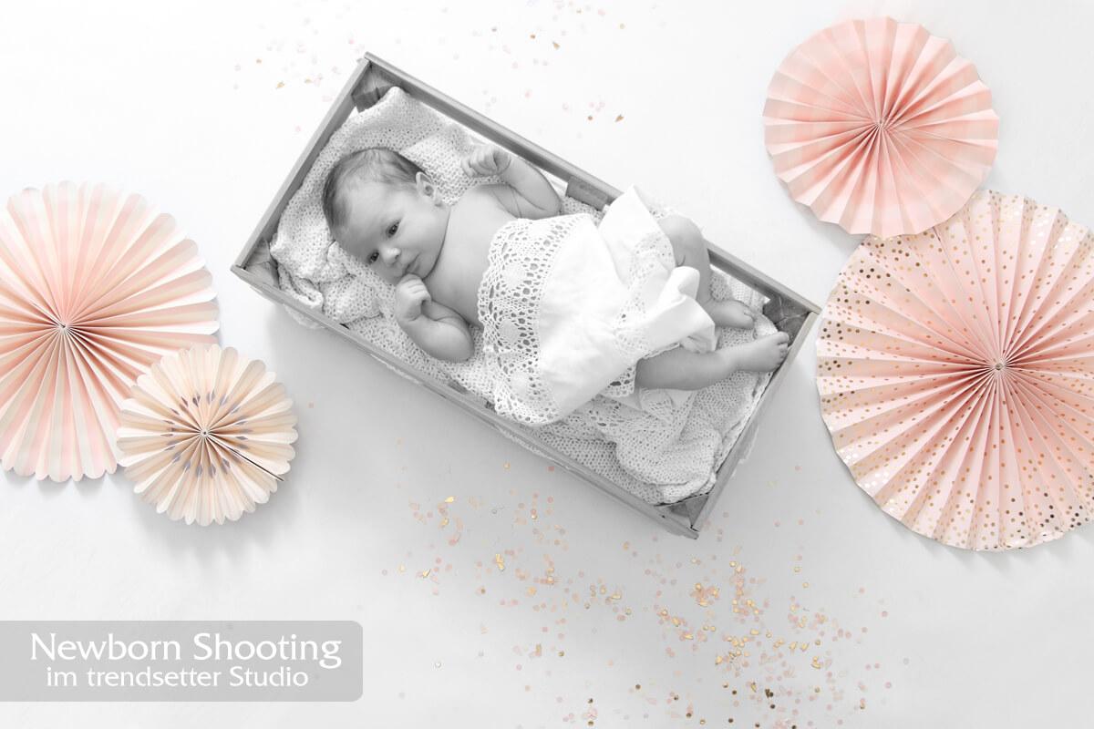 Newborn und Neugeborenenfotoshootings im trendsetter Fotostudio