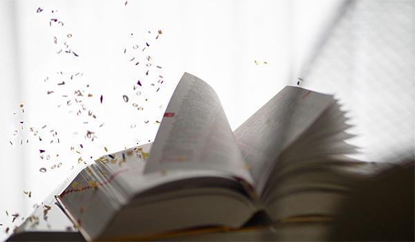 Lasst in unserem Kurs mit bewegten Objekten doch mal die Buchstaben aus einem Buch fliegen.