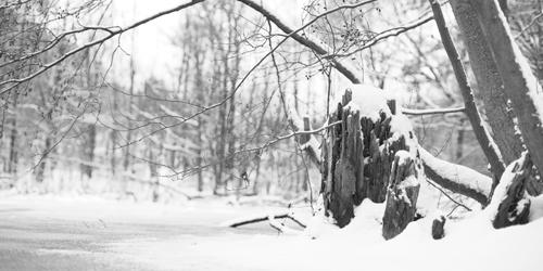 Privatfotografie-Kurs im Winter - einzigartige Motive entdecken und im Bild festhalten.